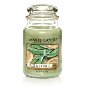 Sage & Citrus Jar Candle