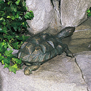 Turtle Fountain, Medium